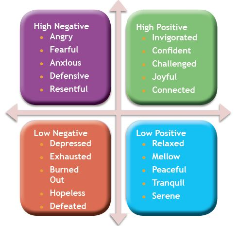 Image result for physical mental emotional and spiritual quadrants
